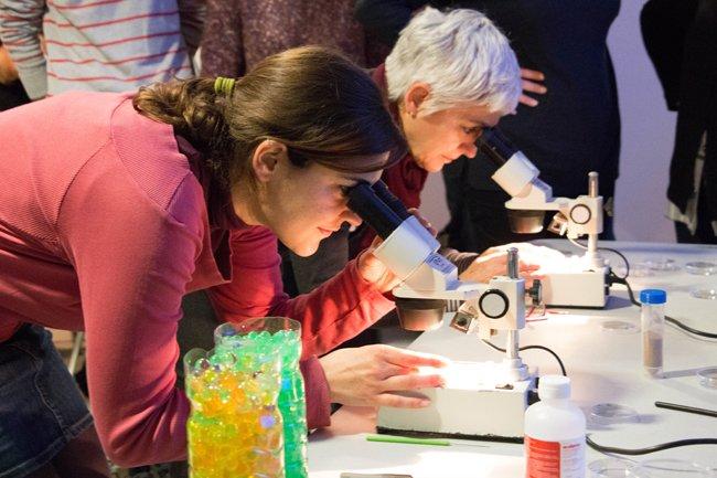 II Jornadas sobre la Enseñanza de las Ciencias en Infantil y Primaria
