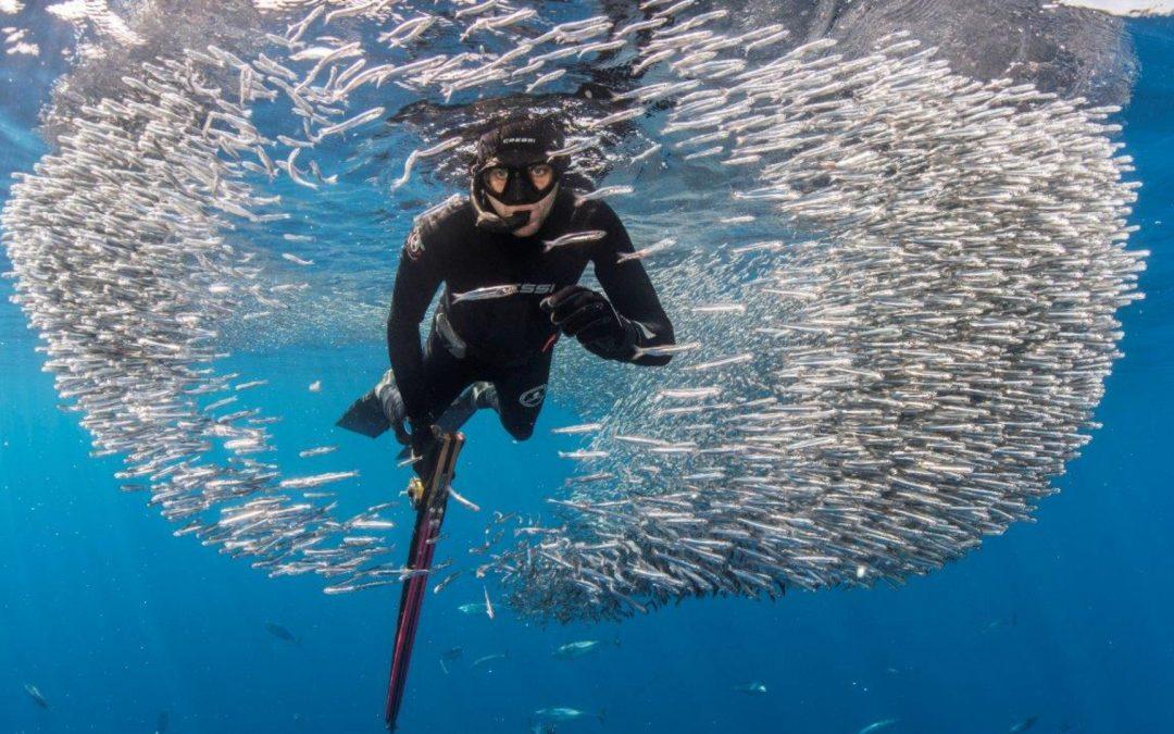 ¿Qué impacto tiene la pesca recreativa en la sociedad y la economía?