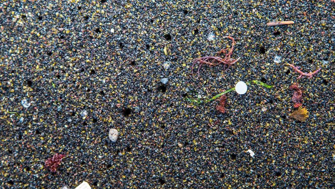 Un estudio analiza cómo se hunden los microplásticos en el Mar Mediterráneo