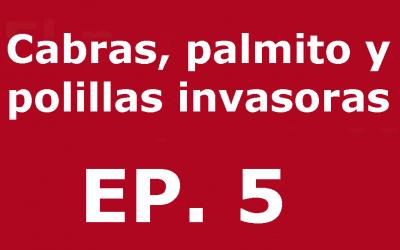 Cabres, margalló i arnes invasores | Voces, CSIC Balears 05