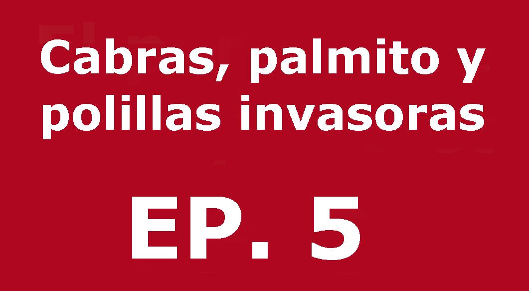Cabras, palmito y polillas invasoras | Voces, CSIC Balears #05
