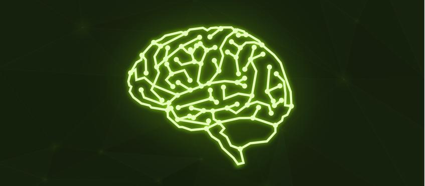 Investigadores del IFISC analizan la importancia de los retrasos en el flujo de información cerebral