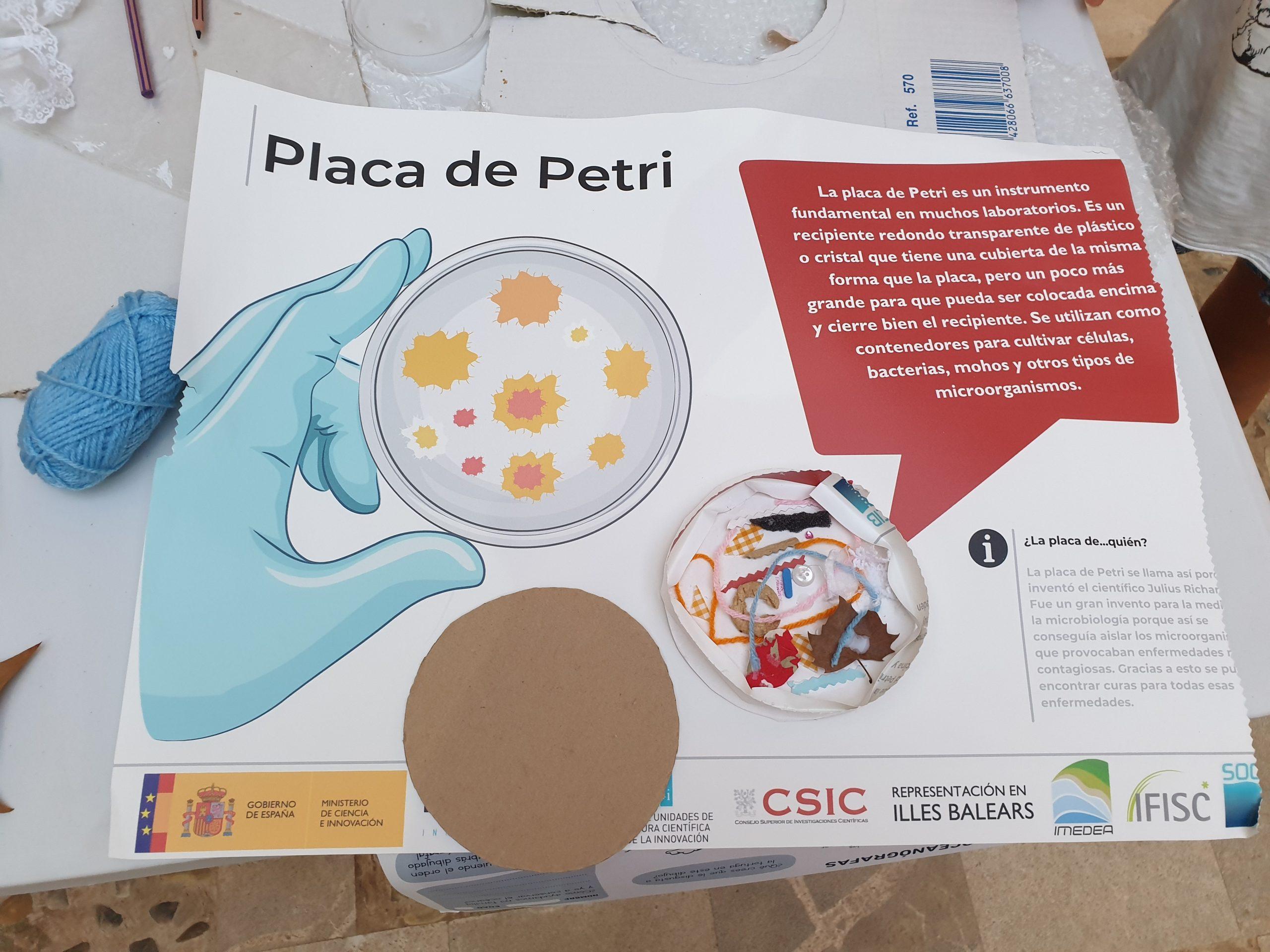 Collage de una placa Petri