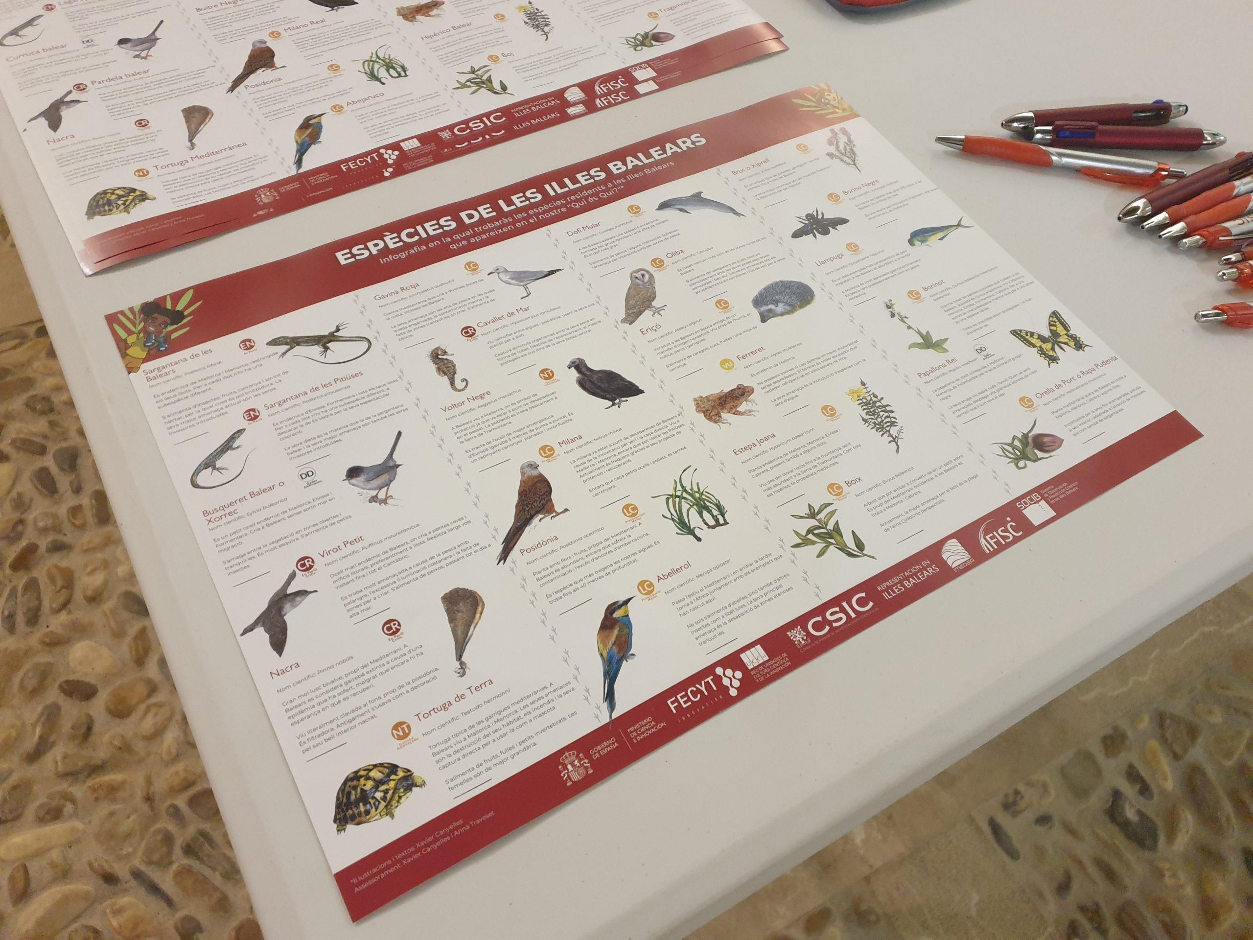 Infografía Especies Islas Baleares